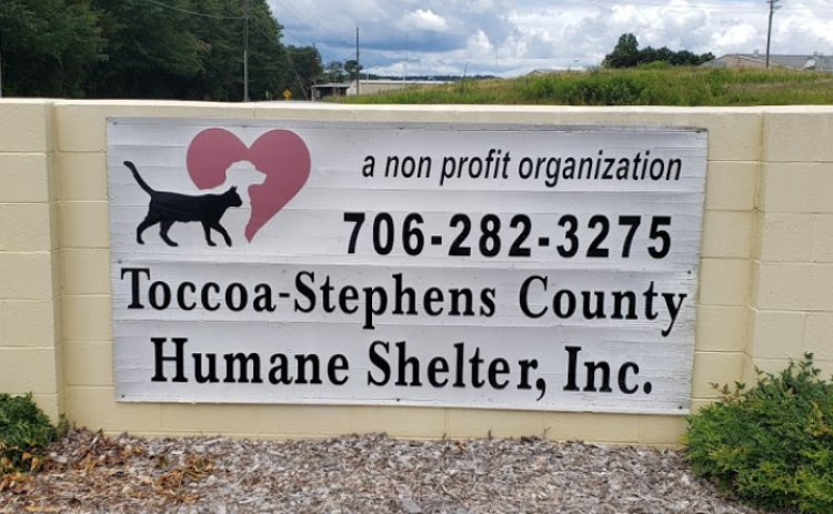 The Toccoa-Stephens County Animal Shelter has temporarily closed.