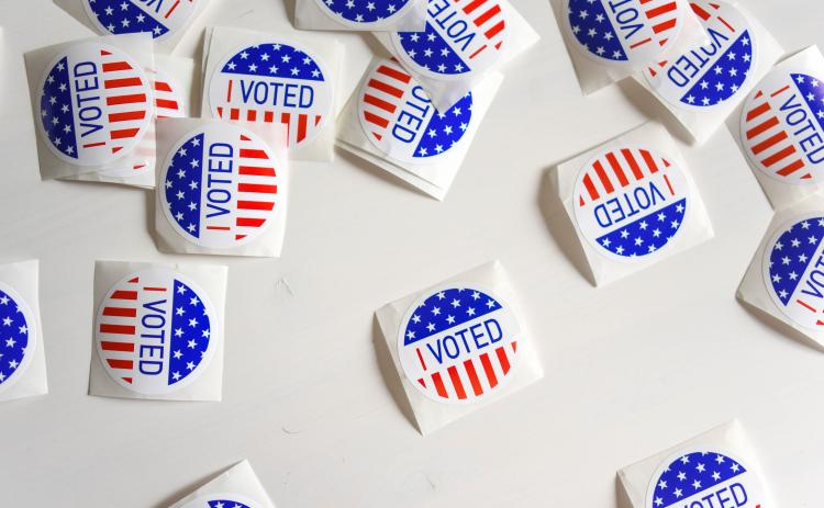 The early in-person period to vote in Georgia's runoff elections begins Dec. 14.